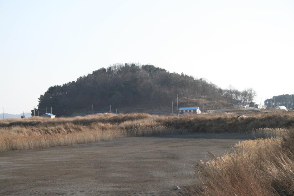 동산리(東山里)