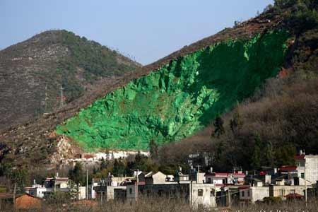 중국식 산림녹화